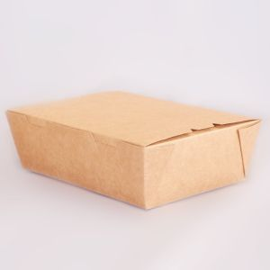 Kraft Box Medium